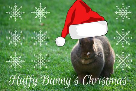 Fluffy Bunny's Christmas