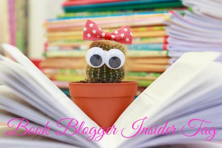 Book Blogger Insider Tag (1)