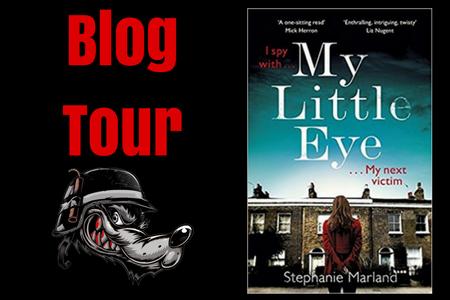 blog tour mle