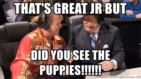 thats-great-jr-but-did-you-see-the-puppies