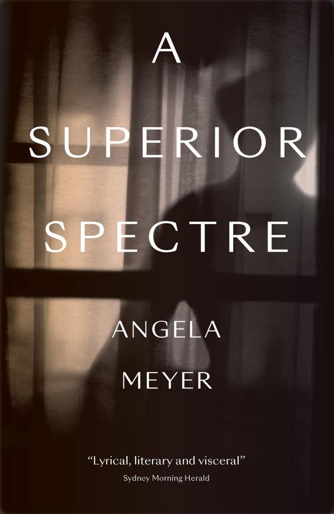 A_Superior_Spectre_cover