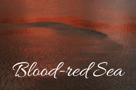 Blood-red Sea