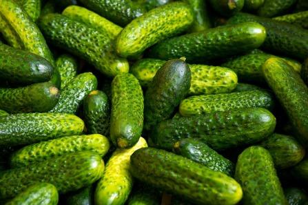 cucumber-5453363_1280