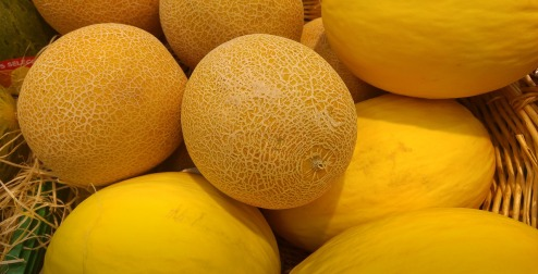 melons-2105434_1280