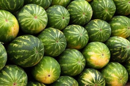 watermelons-2636_1280